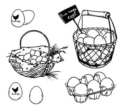 Set of farmer's eggs drawings, vector illustration
