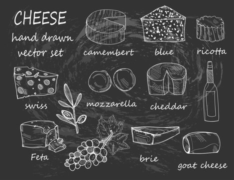 Hand drawn various sorts of cheese. Graphic vector set. All elements are isolated. Chalkboard style. Black background