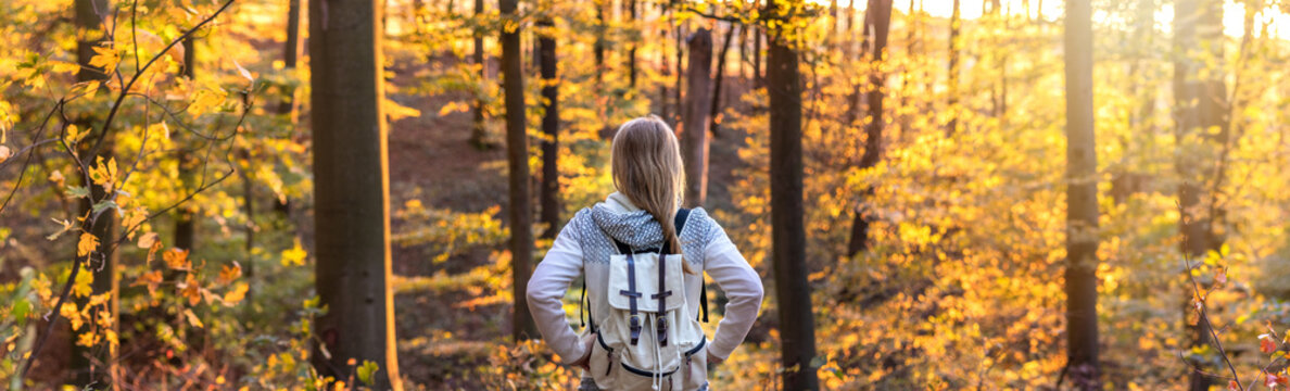 Woman with backpack walking in forest at autumn, panoramic view
