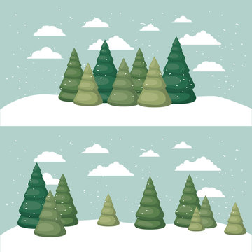 snowscape with pines scene