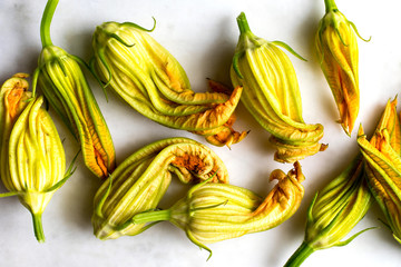 Close up of courgette flowers against white background