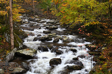 Cascades in Little Pigeon River of Smoky Mountains Wall mural