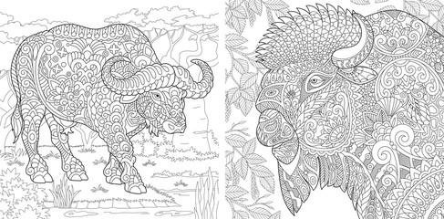Coloring pages with buffalo and bison