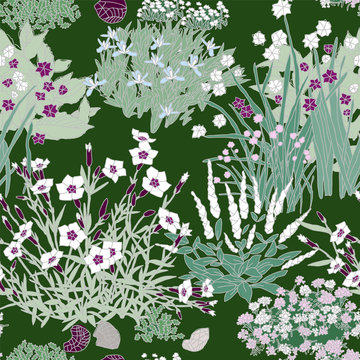 Herbs, Flowers, Rock garden - floral pattern. Hand drawn seamless vector pattern with clumps of  plants like dianthus, iris, chive, iris, iberis, salvia.