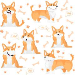 Cute pattern with welsh corgi dog.