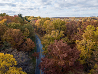 Fall Forest in Midwest Aerial Photography with Road