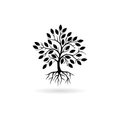 Black Tree and root icon or logo