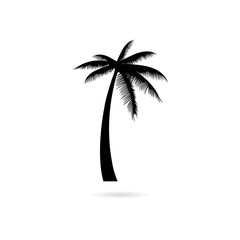 Black Silhouette palm tree, Palm tree icon or logo