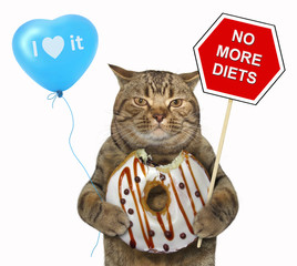 "The cat holds a sign "" no more diets "", a blue balloon and a chocolate bitten donut. White background."