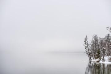 Fog covered winter lake Bohinj