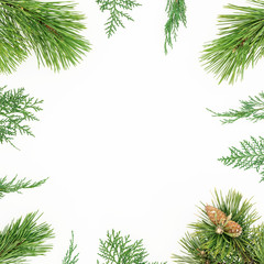 Christmas round frame of winter tree branches on white background. Festive winter background. Flat lay, top view