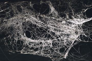 Scary cobweb in the dark Wall mural