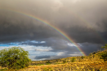Regenbogen auf Big Island, Hawaii