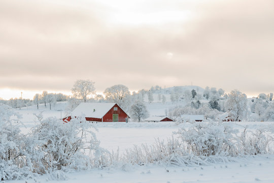 Farmhouse in an idyllic winter landscape with snow and frost