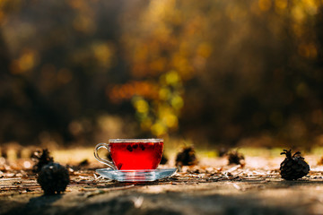Herbal Tea and Autumn