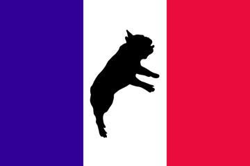 Silhouette of a French bulldog jump and Flag of France