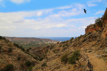 Kreta, Way to Milatos caves, Eagle