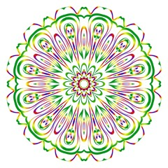 Sacred oriental mandala. color floral ornament. Abstract shapes in Asian style. Vector Illustration