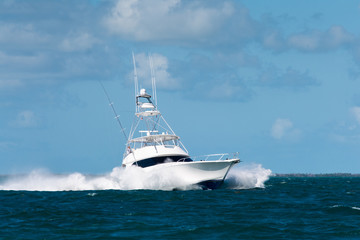 Sport Fishing Charter Boat in Florida Keys