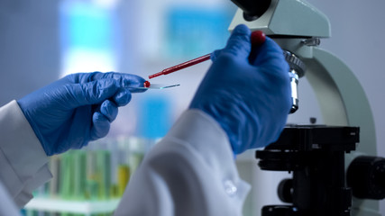 Scientist dripping blood sample for genetics examination, microbiology test