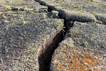 Cracked earth in Timanfaya National Park on Lanzarote island