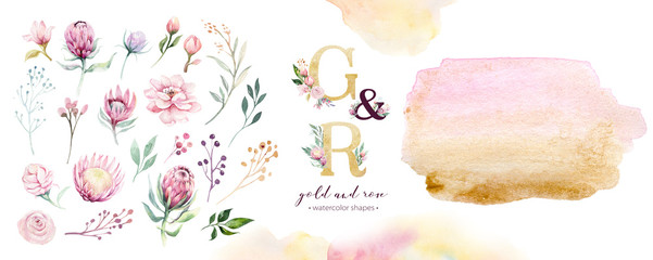 Gold and rose watercolor acrylic paint background shape. Abstract golden art brush ink paint on white. Decoration design element