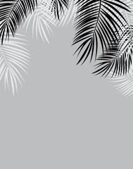 Black and White Palm Leaf Vector Background Illustration