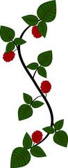 Folk art Raspberry vine scroll