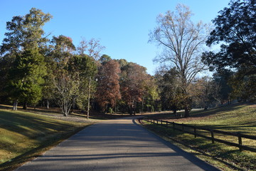Park road in Avent Park in Oxford Mississippi