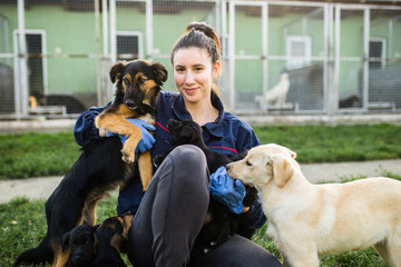 Fototapeta Young woman in dog shelter playing with dogs an choosing which one to adobt. obraz