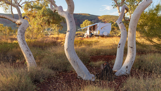 Large caravan and four wheel drive vehicle camped next to a gum tree in the Karijini National Park, Australia in the late afternoon