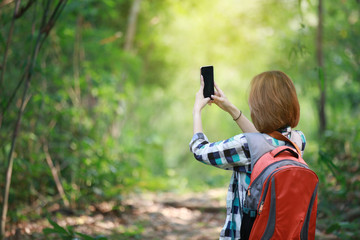 tourism carry back pack and using cell phone in the forest