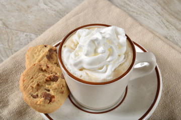 Cup of hot chocolate with whipped cream and cookies