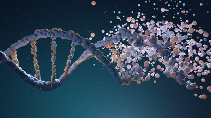 DNA strand assembling from different elements