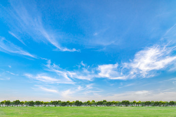Blue sky and clouds with green grass and trees. Beautiful sky on summer season.