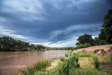 Printed kitchen splashbacks Elephant Olifant river scenery in stormy day in Kruger National park, South Africa