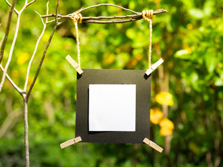 blank picture frame hanging on branch tree with blurred background, blank photo frame with blurred background