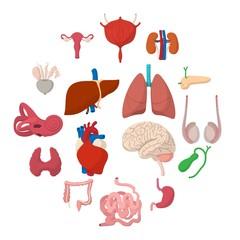 Internal organs cartoon icons set isolated on white background
