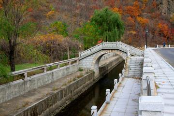 bridges and rail