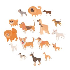 Dog icons set in cartoon style on a white background