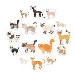 Cat icons set in cartoon style on a white background