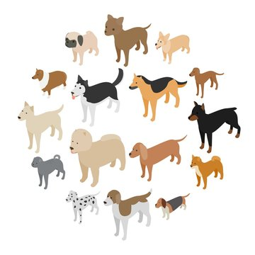 Dog icons set in isometric 3d style on a white background