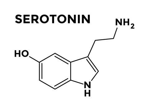 Serotonin neurotransmitter structural chemical formula