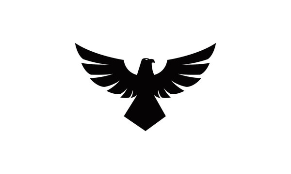 silhouette of flying eagle