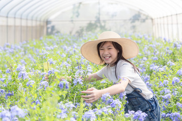 Happy asian little girl among flowers in the garden,Cape Leadwort flower is very beautiful in the morning,scientific name is Plumbagoauriculata