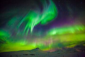 Aurora Borealis or better known as The Northern Lights for background view in Iceland, Snaefellsnesvegur during winter