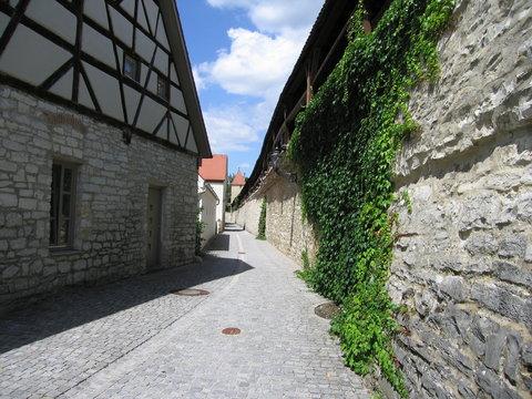 Stadtmauer in Berching mit Wehrgang und Efau
