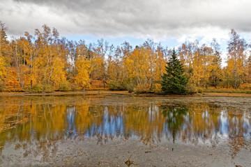 étang de Haute-Saône en automne