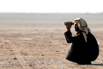Fayez El Quridy, 35, a hunting bedouin falconry looks through a binoculars and monitors the sky during World Falconry Day at Borg al-Arab desert in Alexandria