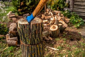 Fototapeta rozłupana kłoda drewna starą siekierą. W tle widać pocięte drewno na opał obraz